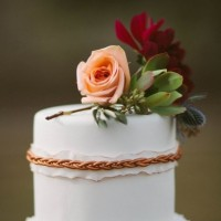 Bronze Wedding Cake Photo 2