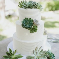 Classic Buttercream with Succulents